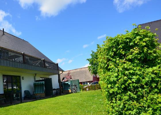 Holiday apartment Ferienw. Hiddensee (181401), Gager, Rügen, Mecklenburg-Western Pomerania, Germany, picture 17
