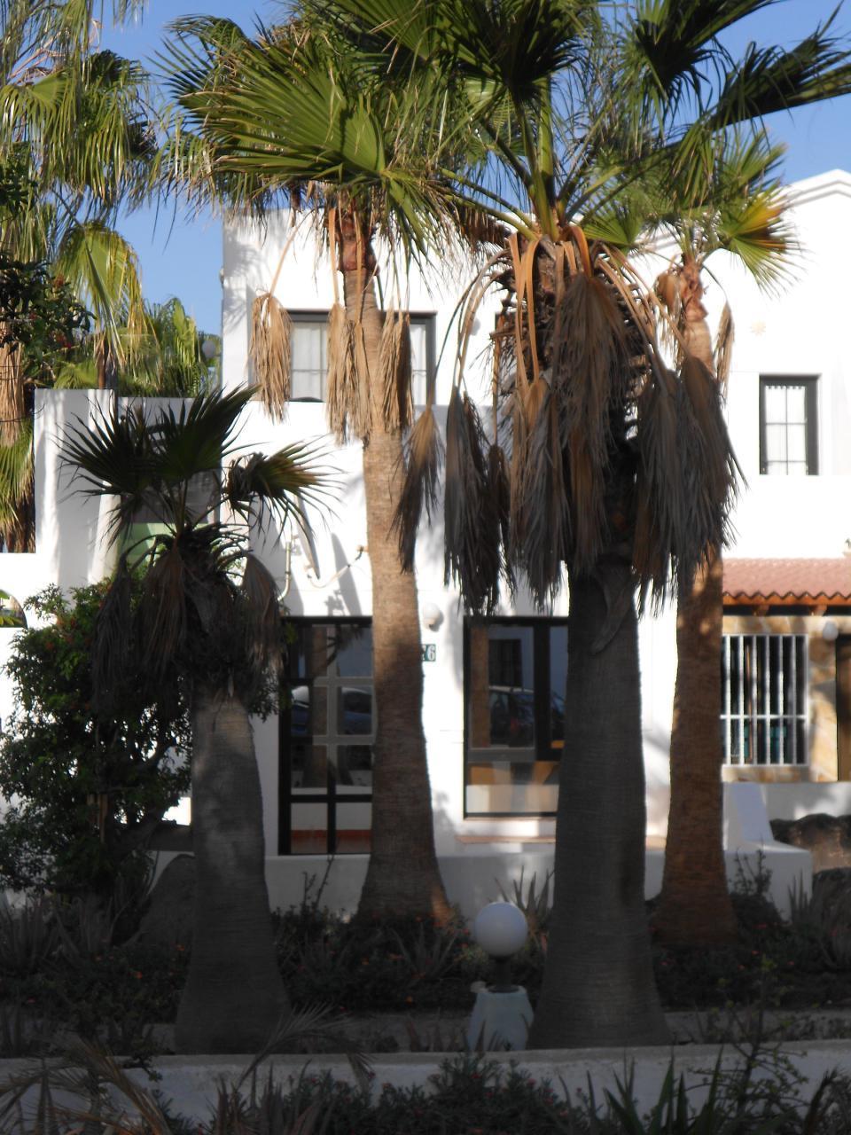 Ferienwohnung Costa Calma mit privatem Garten direkt am Strand (1851118), Costa Calma, Fuerteventura, Kanarische Inseln, Spanien, Bild 2