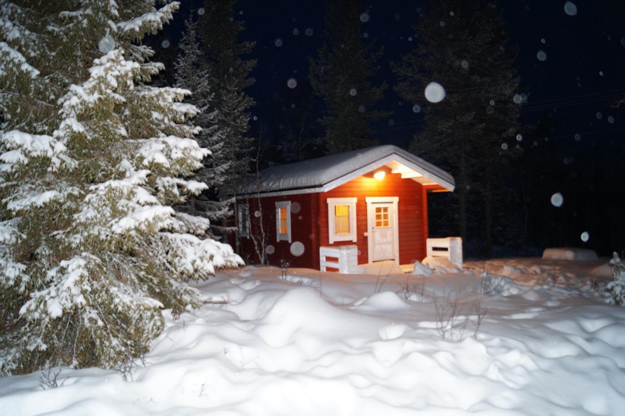 Ferienhaus Fjällräv (1867998), Arvidsjaur, Norrbottens län, Nordschweden, Schweden, Bild 1