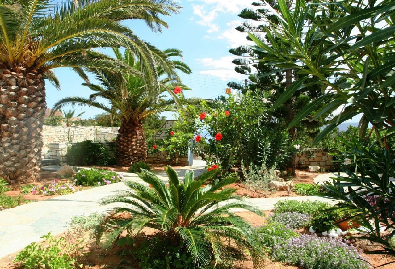 Holiday apartment Exklusives Garten-Appartment in Paros (1876194), Ampelas, Paros, Cyclades, Greece, picture 15