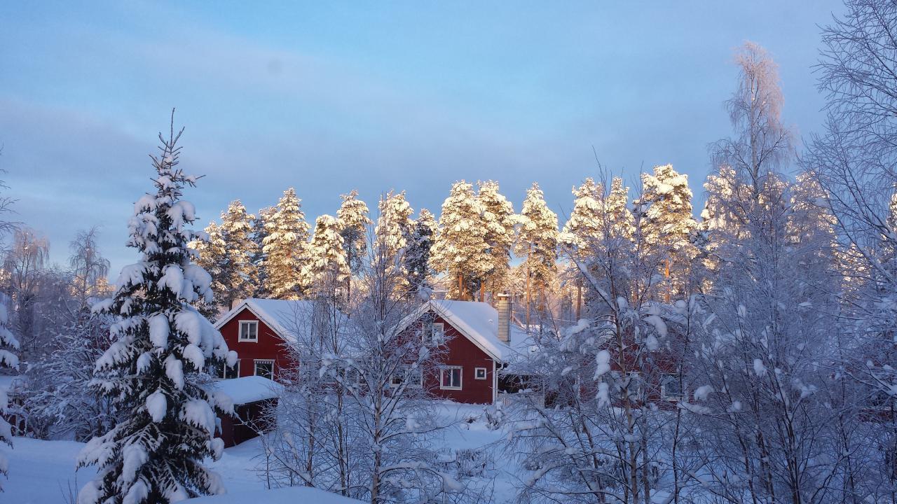 Ferienhaus Villa Tall, nur 5 km vom Storforsen, Schwedens größten Stromschnellen entfernt (1882911), Vidsel, Norrbottens län, Nordschweden, Schweden, Bild 21