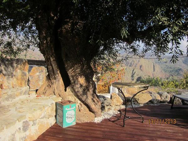 Holiday house Sarakina Spiti (1901099), Myrtos, Crete South Coast, Crete, Greece, picture 2