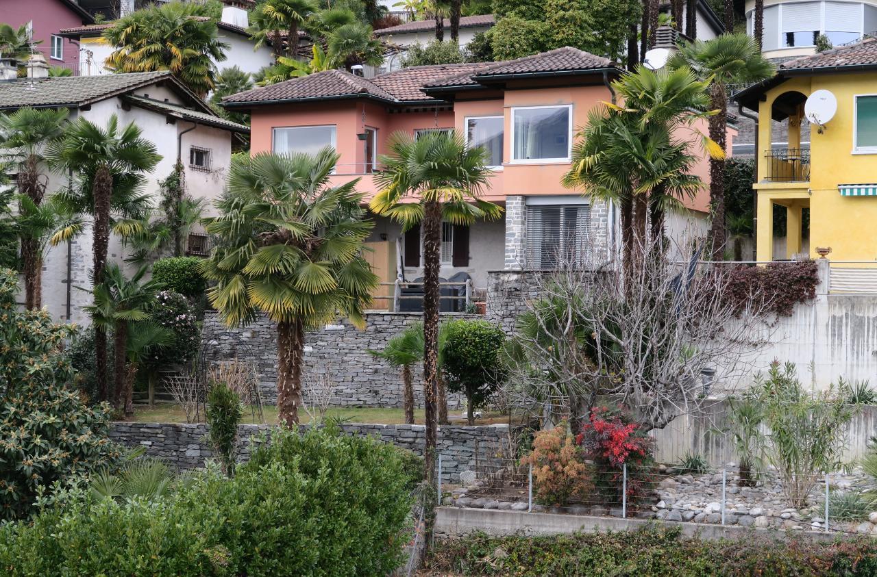 Holiday apartment ... die Ruhe über der Stadt geniessen ... Il Réduit alle Rascane Orselina, Terrazza (192973), Orselina, Lake Maggiore (CH), Ticino, Switzerland, picture 2