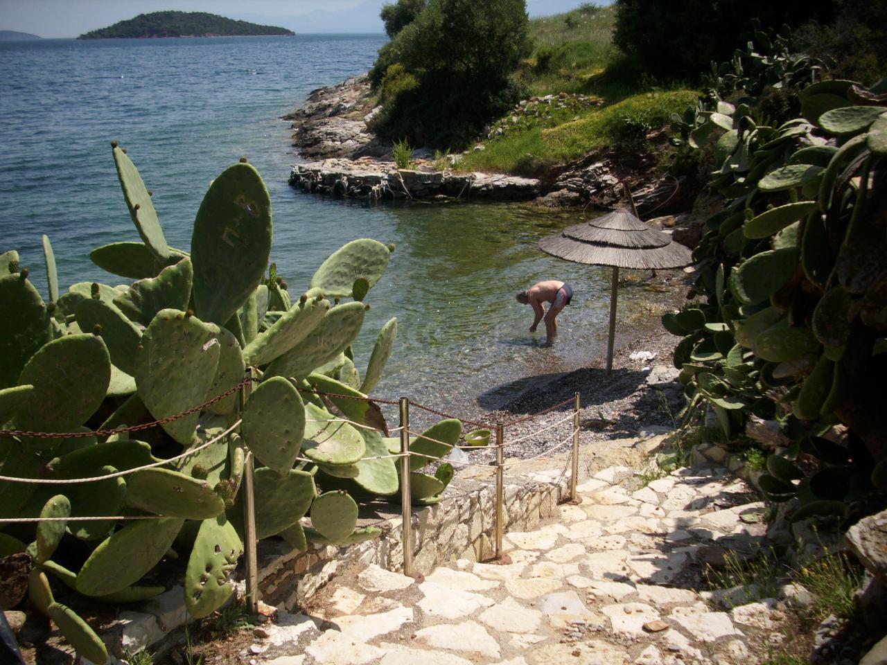 Ferienwohnung am Meer,Garten,Meeresblick /Die Antike in der Nähe (1948899), Marathias, , Zentralgriechenland, Griechenland, Bild 20