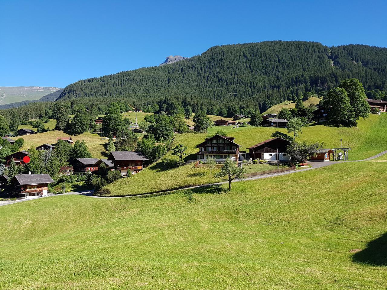 Ferienwohnung Chalet Moosrain - Studio West (1978339), Grindelwald, Jungfrauregion, Berner Oberland, Schweiz, Bild 8