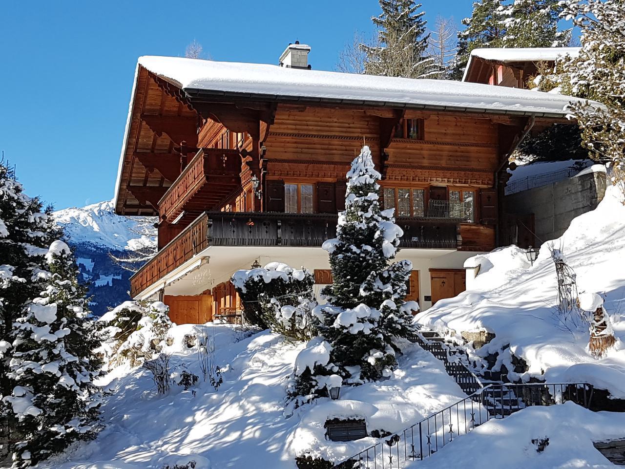 Ferienwohnung Chalet Moosrain - Studio West (1978339), Grindelwald, Jungfrauregion, Berner Oberland, Schweiz, Bild 14