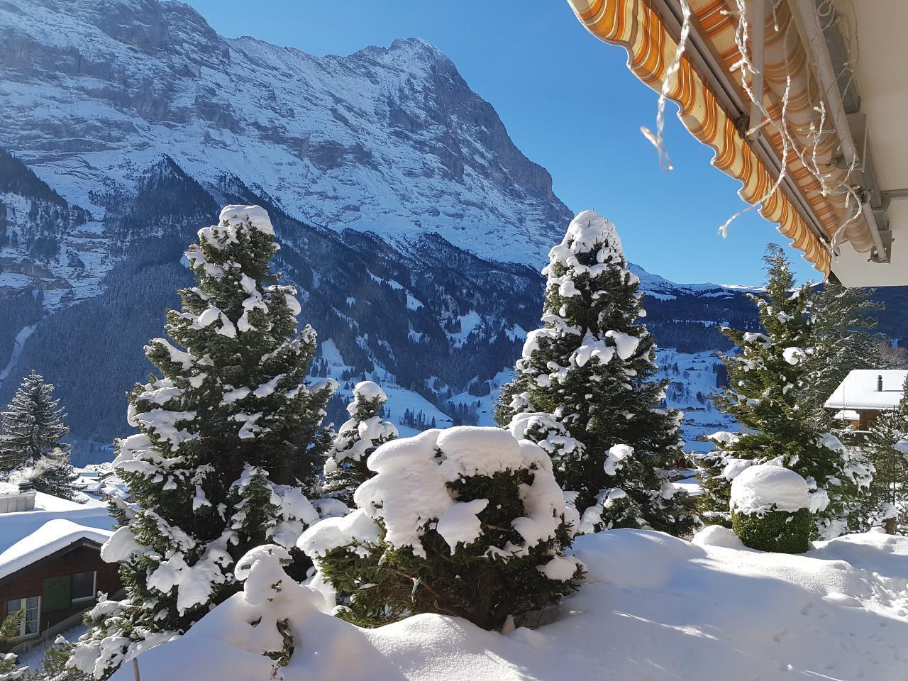 Ferienwohnung Chalet Moosrain - Studio West (1978339), Grindelwald, Jungfrauregion, Berner Oberland, Schweiz, Bild 15