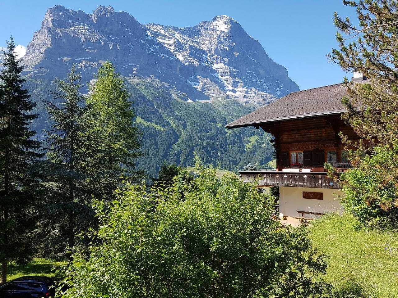 Ferienwohnung Chalet Moosrain - Studio West (1978339), Grindelwald, Jungfrauregion, Berner Oberland, Schweiz, Bild 10