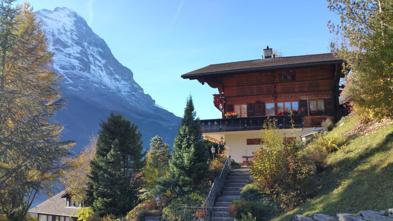 Ferienwohnung Chalet Moosrain - Studio West (1978339), Grindelwald, Jungfrauregion, Berner Oberland, Schweiz, Bild 2