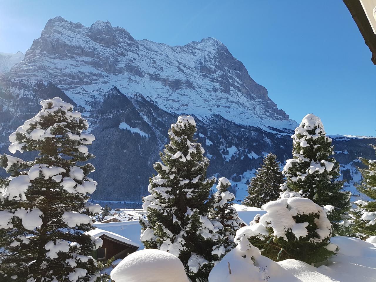 Ferienwohnung Chalet Moosrain - Studio West (1978339), Grindelwald, Jungfrauregion, Berner Oberland, Schweiz, Bild 16