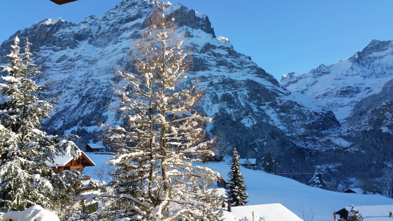 Ferienwohnung Chalet Moosrain - Studio West (1978339), Grindelwald, Jungfrauregion, Berner Oberland, Schweiz, Bild 17