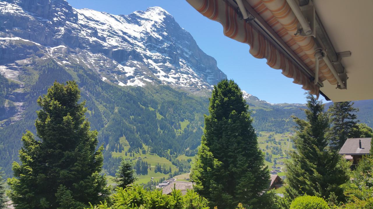 Ferienwohnung Chalet Moosrain - Studio West (1978339), Grindelwald, Jungfrauregion, Berner Oberland, Schweiz, Bild 4