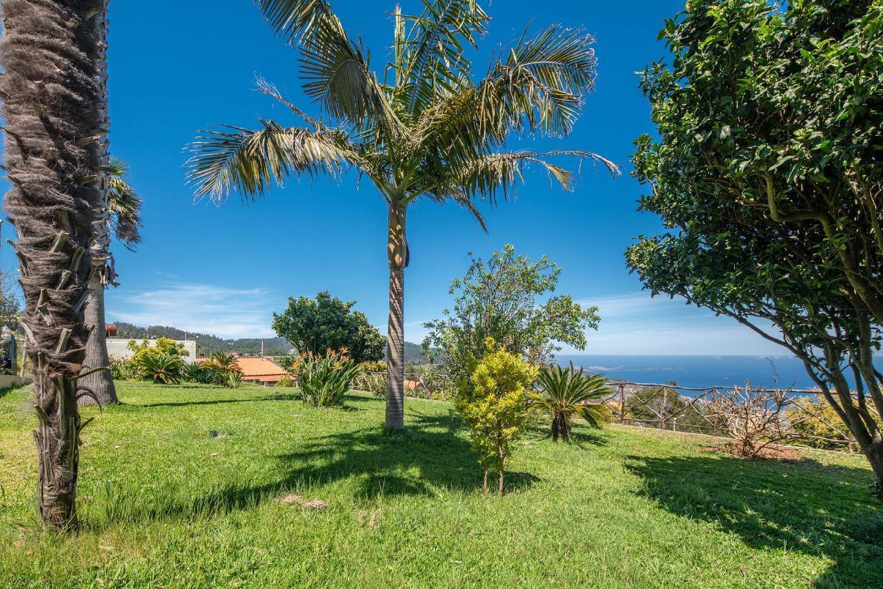 Ferienhaus Villa Saint Petersburg - von Holiday Rental Madeira (2011843), Santa Cruz, , Madeira, Portugal, Bild 40