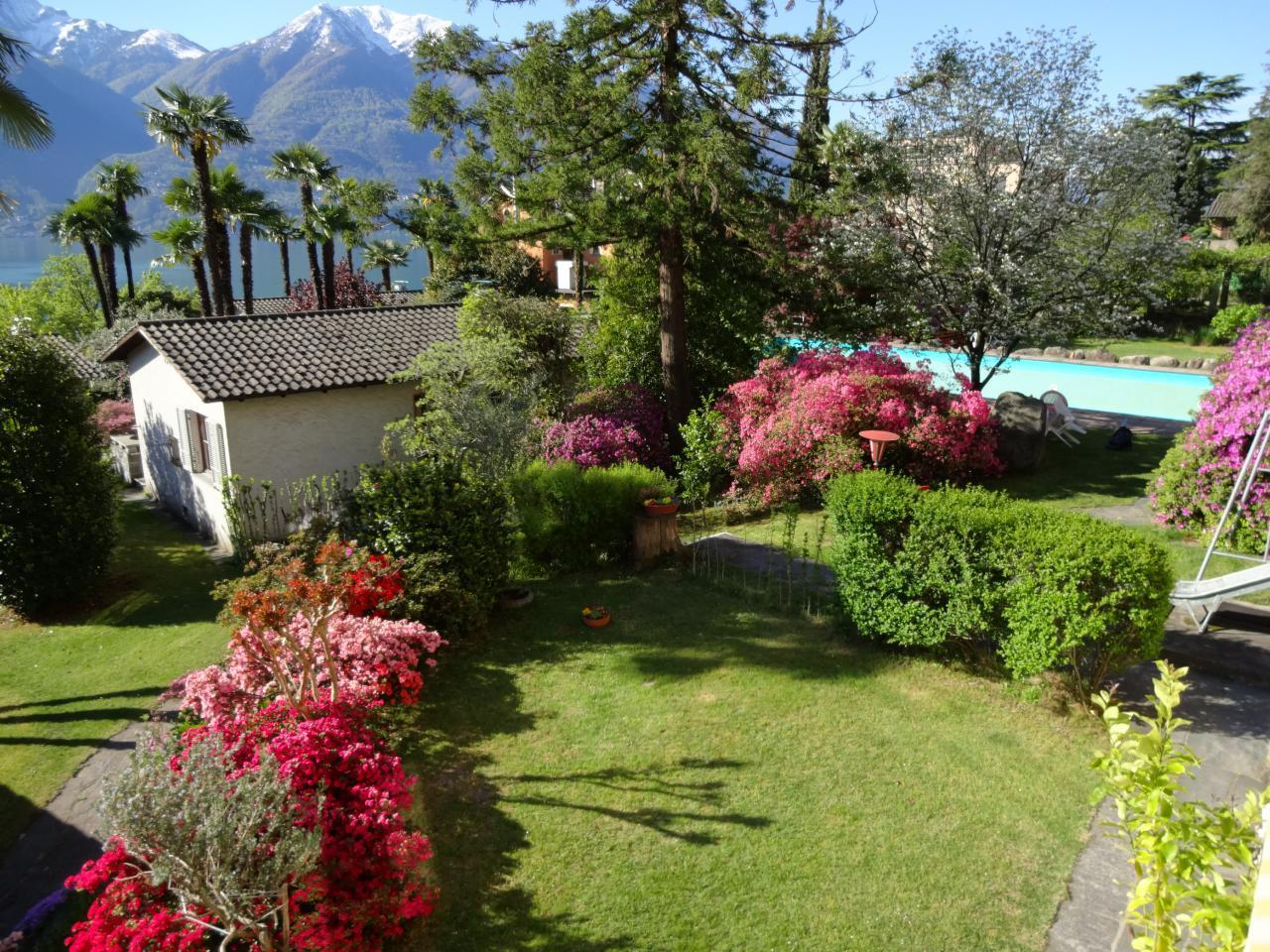 Holiday house Eco-Casa Azalea (2025498), Minusio, Lake Maggiore (CH), Ticino, Switzerland, picture 1