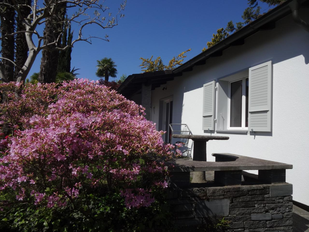 Holiday house Eco-Casa Azalea (2025498), Minusio, Lake Maggiore (CH), Ticino, Switzerland, picture 3