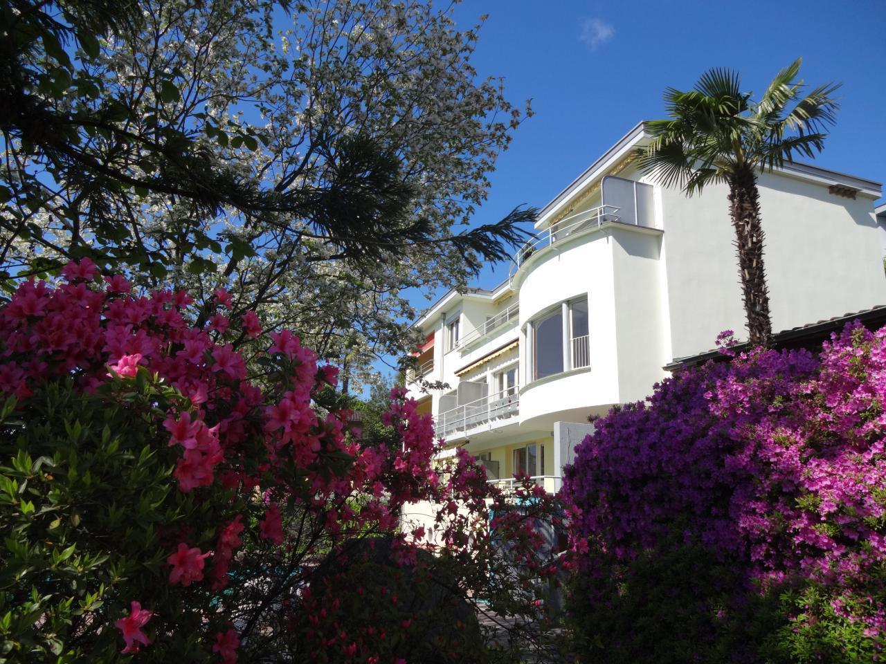 Holiday apartment Villa Primavera Studio12 (2025502), Minusio, Lake Maggiore (CH), Ticino, Switzerland, picture 9
