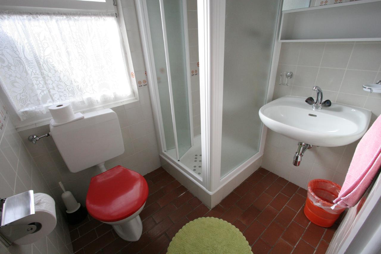 Holiday apartment Villa Primavera Studio12 (2025502), Minusio, Lake Maggiore (CH), Ticino, Switzerland, picture 8