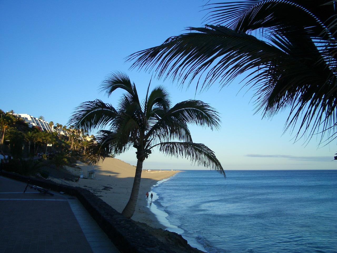Ferienhaus Exklusiver Bungalow im Süden Fuerteventuras (2029655), Morro Jable, Fuerteventura, Kanarische Inseln, Spanien, Bild 14