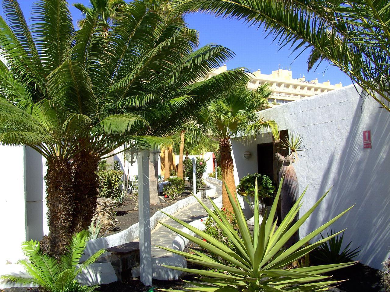 Ferienhaus Exklusiver Bungalow im Süden Fuerteventuras (2029655), Morro Jable, Fuerteventura, Kanarische Inseln, Spanien, Bild 10