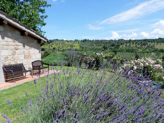 Ferienhaus Villa Maria Cristina (2029657), Bagnoregio, Viterbo, Latium, Italien, Bild 7