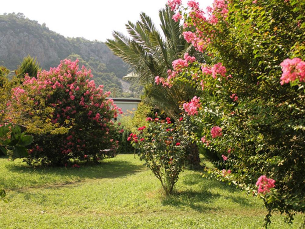 Ferienhaus Märchenwald, komfortabel und ruhig (2032992), Cirali, , Mittelmeerregion, Türkei, Bild 7