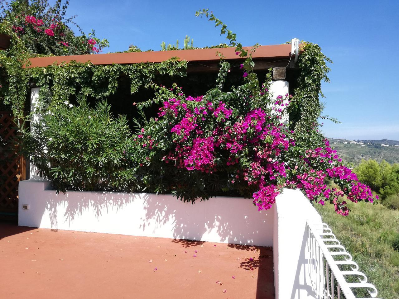 Maison de vacances Ferienhaushälfte Solandra auf sizilianischer Insel mit atemberaubenden Meeres-Rundblick (2038046), Lipari, Lipari, Sicile, Italie, image 46