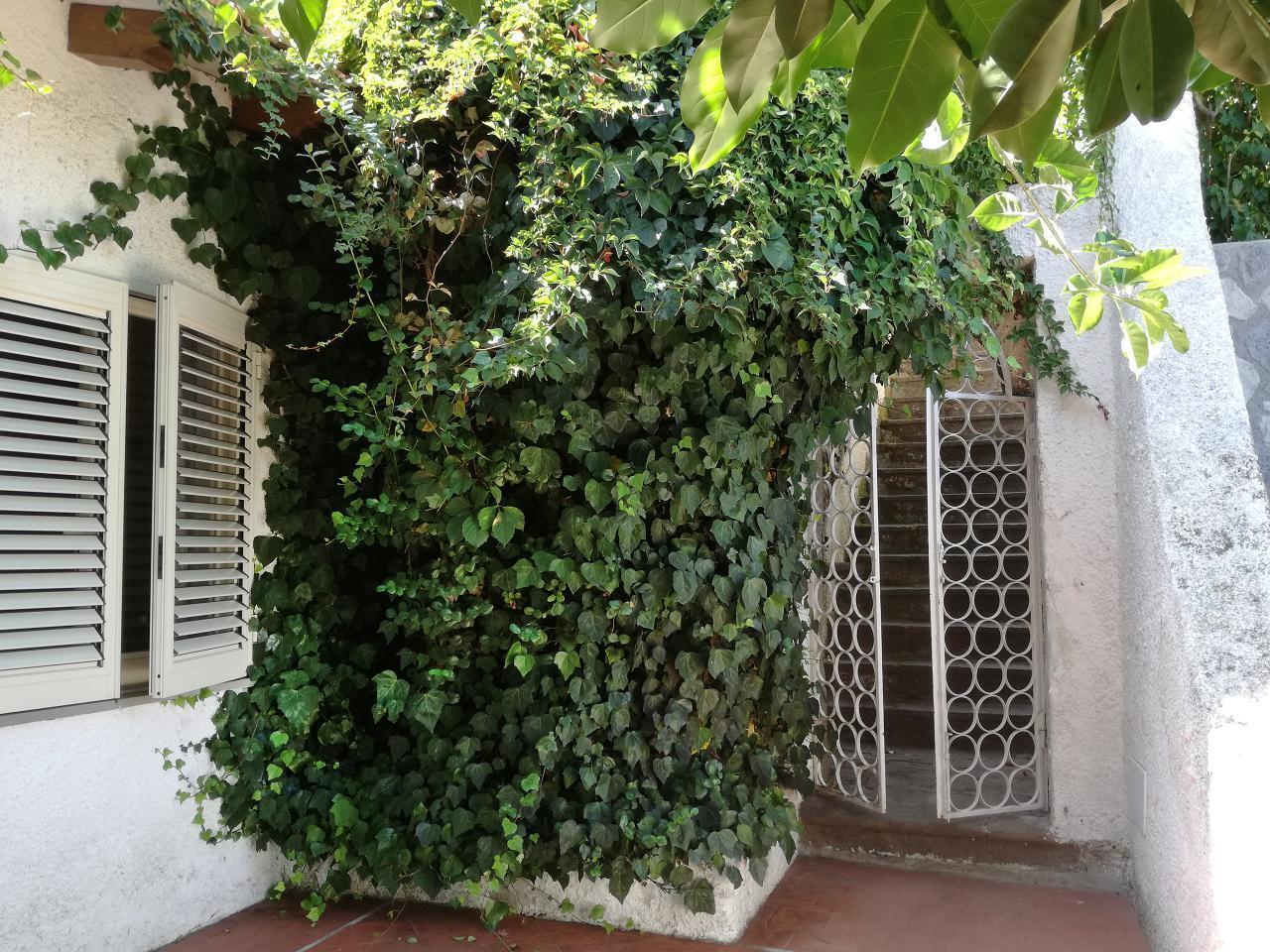 Maison de vacances Ferienhaushälfte Solandra auf sizilianischer Insel mit atemberaubenden Meeres-Rundblick (2038046), Lipari, Lipari, Sicile, Italie, image 33