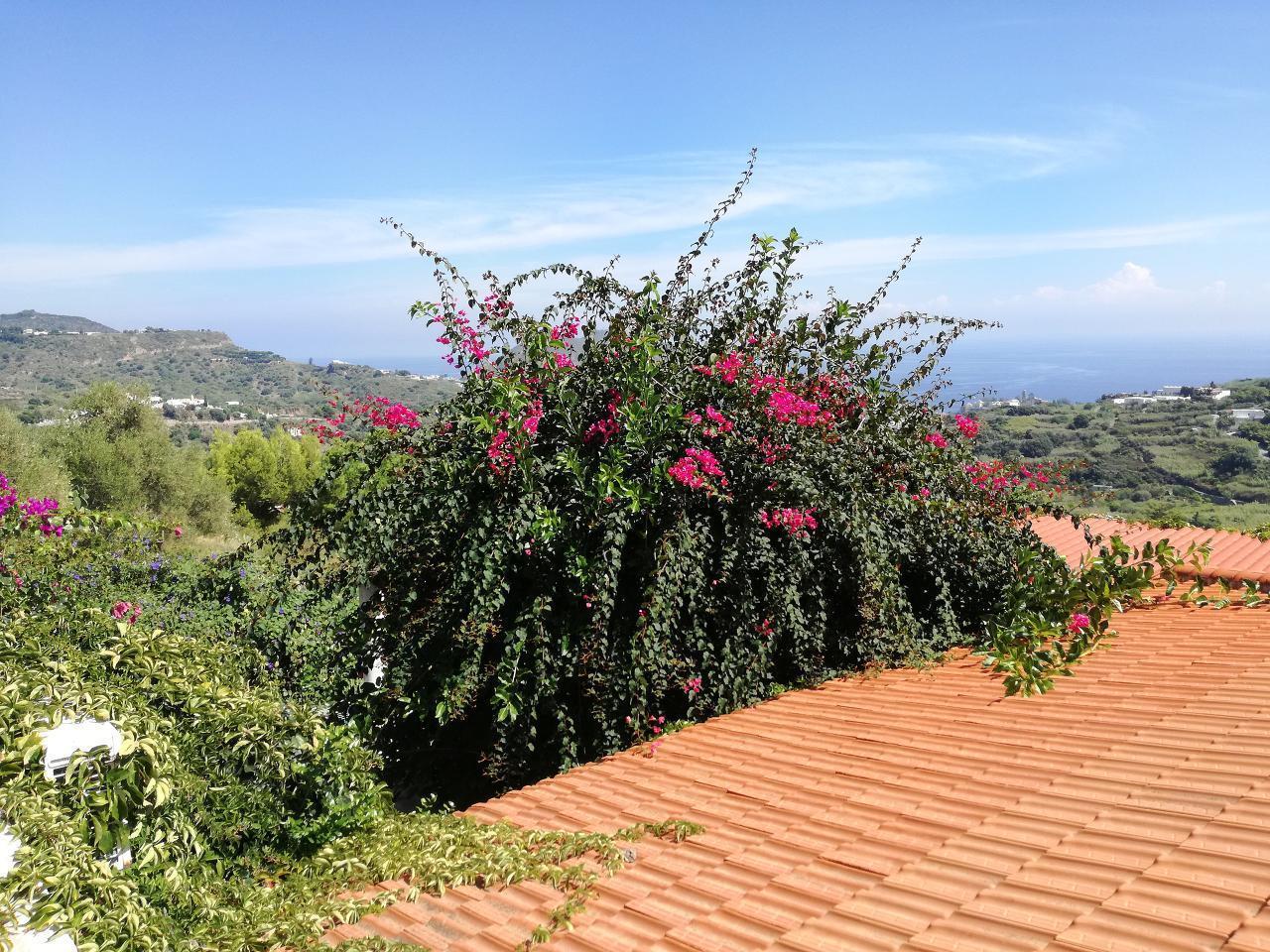 Maison de vacances Ferienhaushälfte Solandra auf sizilianischer Insel mit atemberaubenden Meeres-Rundblick (2038046), Lipari, Lipari, Sicile, Italie, image 47