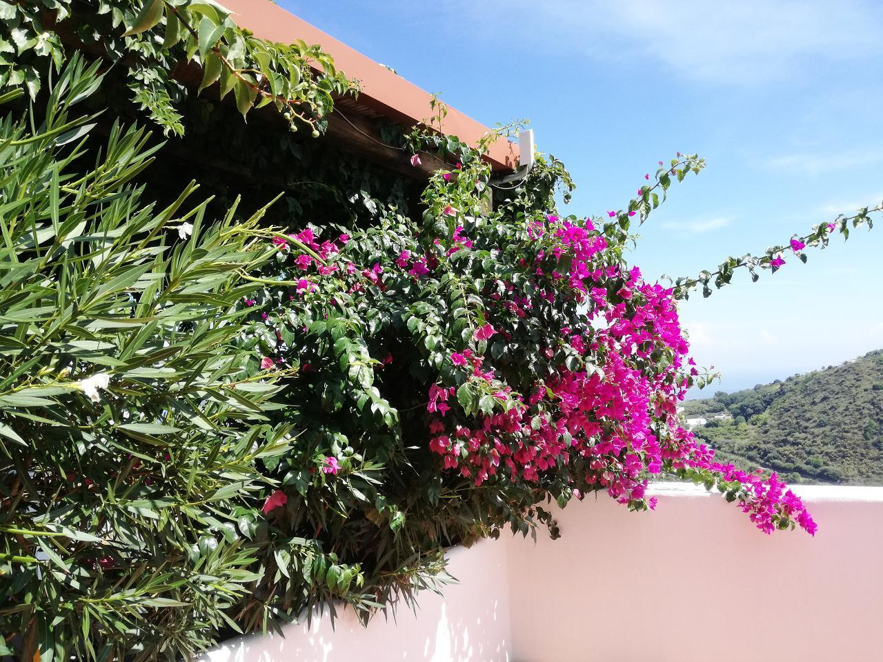 Maison de vacances Ferienhaushälfte Solandra auf sizilianischer Insel mit atemberaubenden Meeres-Rundblick (2038046), Lipari, Lipari, Sicile, Italie, image 42