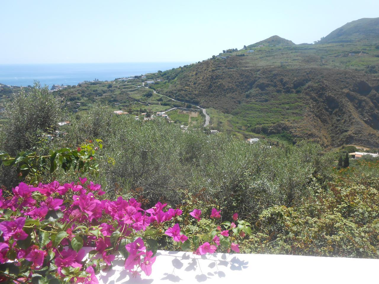 Maison de vacances Ferienhaushälfte Oleandro auf sizilianischer Insel mit atemberaubenden Meeres-Rundblick (2045159), Lipari, Lipari, Sicile, Italie, image 4