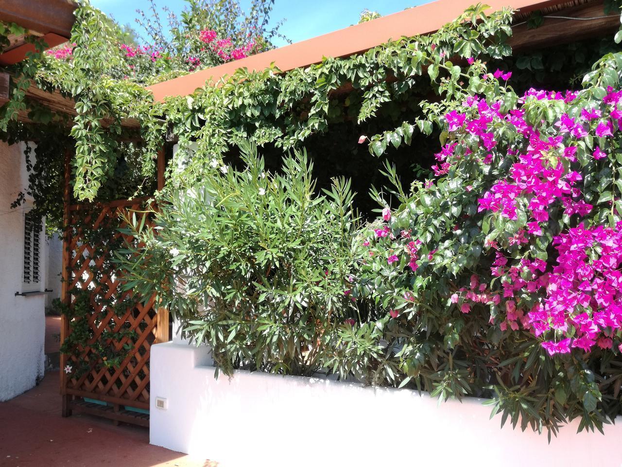 Maison de vacances Ferienhaushälfte Oleandro auf sizilianischer Insel mit atemberaubenden Meeres-Rundblick (2045159), Lipari, Lipari, Sicile, Italie, image 59