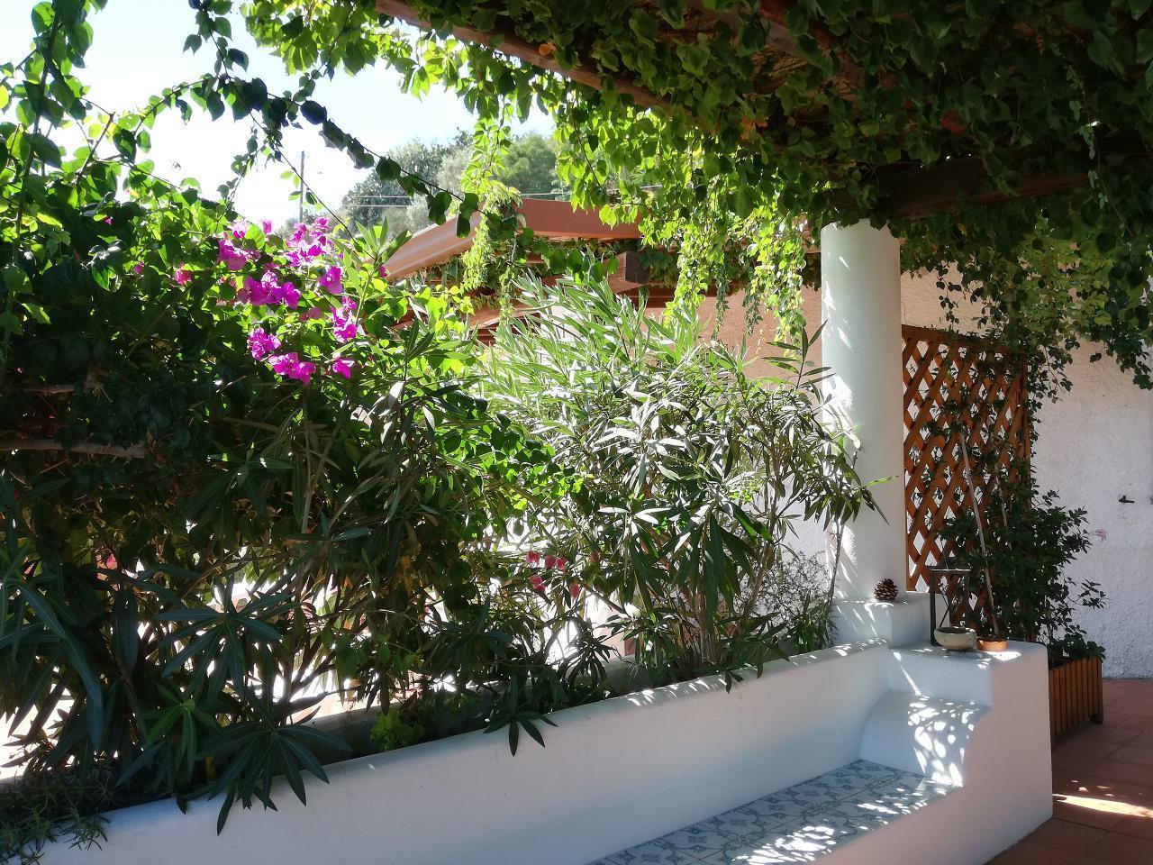 Maison de vacances Ferienhaushälfte Oleandro auf sizilianischer Insel mit atemberaubenden Meeres-Rundblick (2045159), Lipari, Lipari, Sicile, Italie, image 63