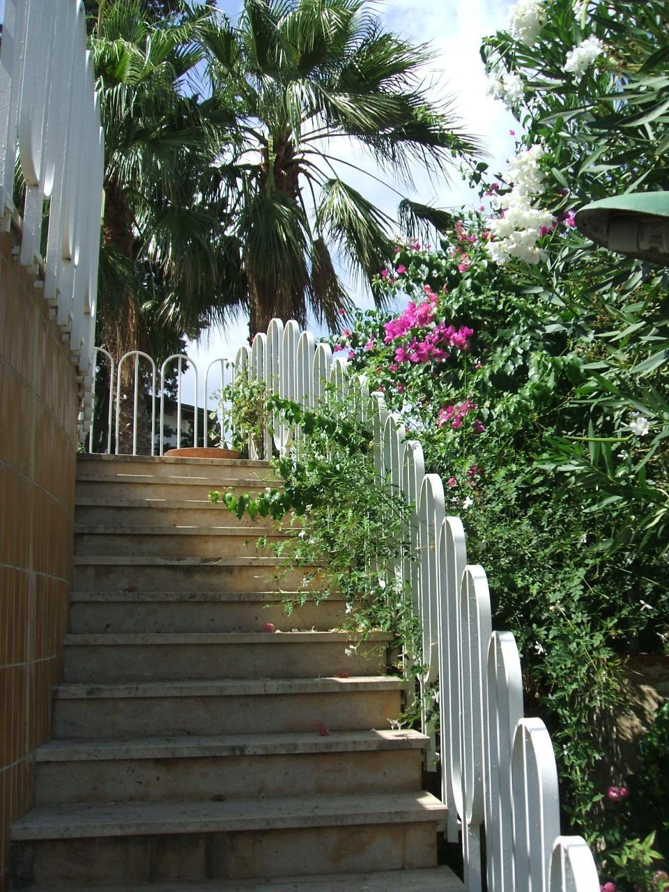 Holiday house Villa Aliotis (2060333), Alcamo, Trapani, Sicily, Italy, picture 3