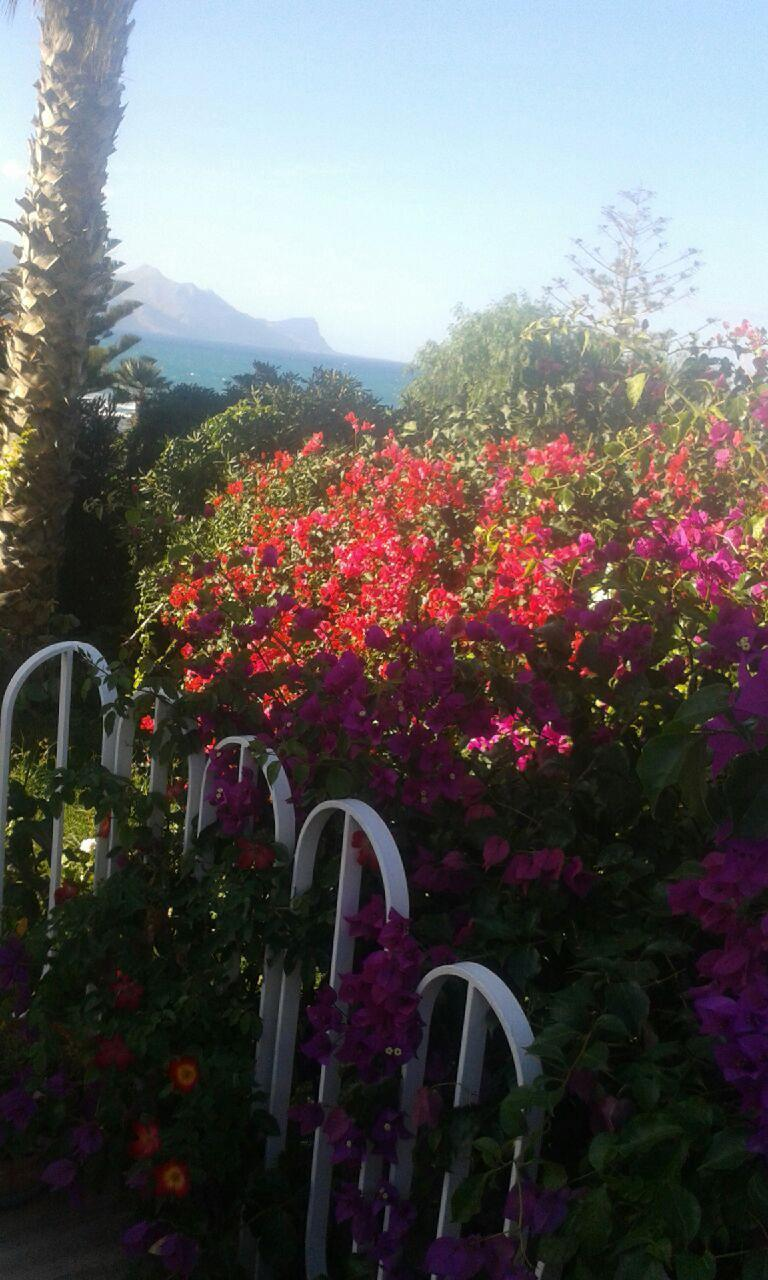 Holiday house Villa Aliotis (2060333), Alcamo, Trapani, Sicily, Italy, picture 10