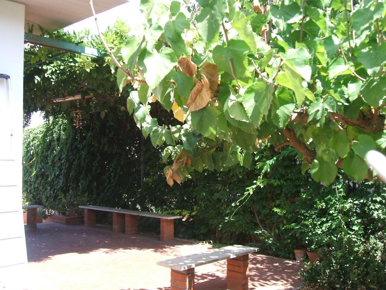 Holiday house Villa Aliotis (2060333), Alcamo, Trapani, Sicily, Italy, picture 7
