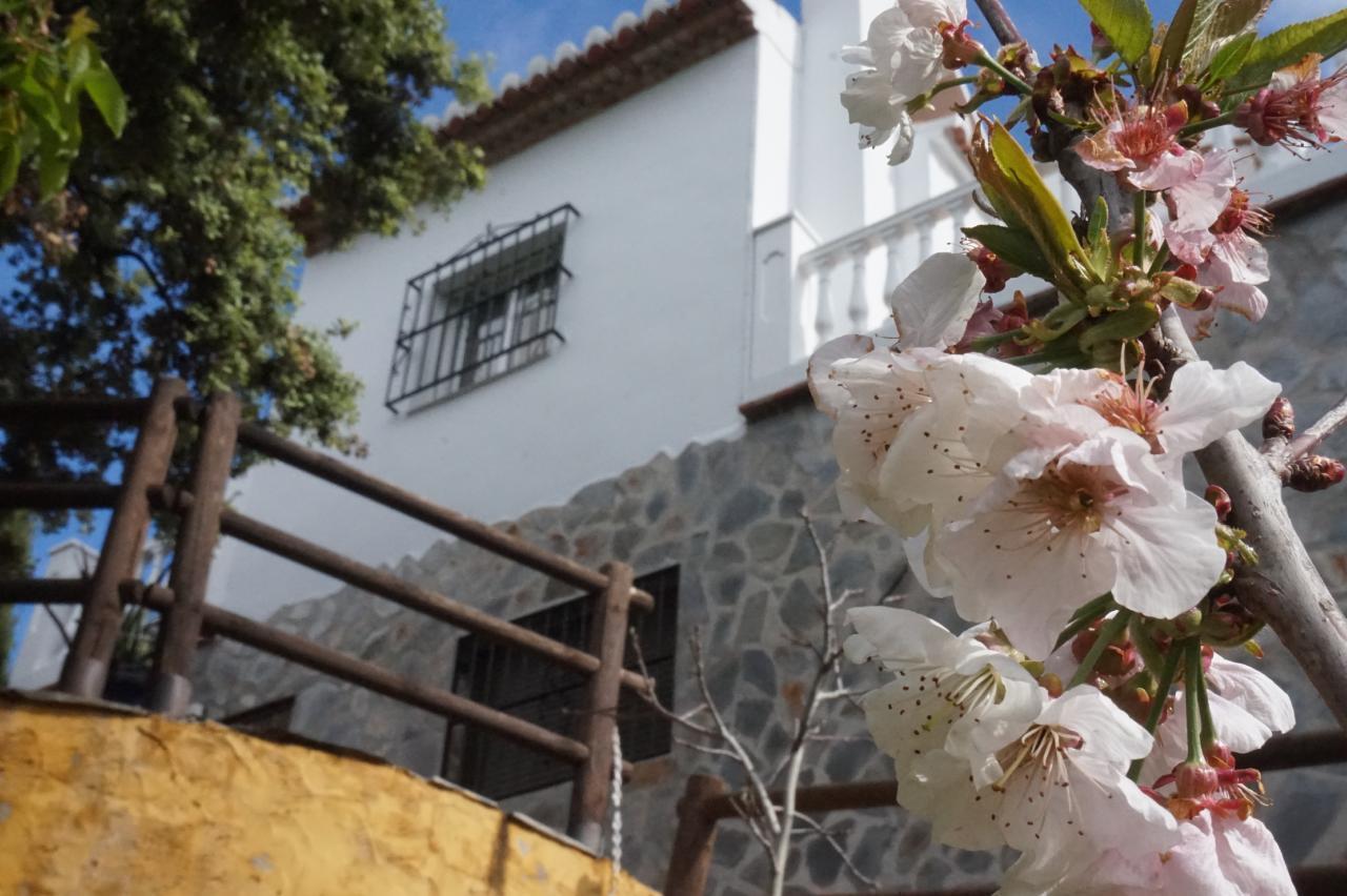 Ferienhaus FERIENHAUS, Costa del Sol , Torrox (2065081), Torrox, Costa del Sol, Andalusien, Spanien, Bild 84