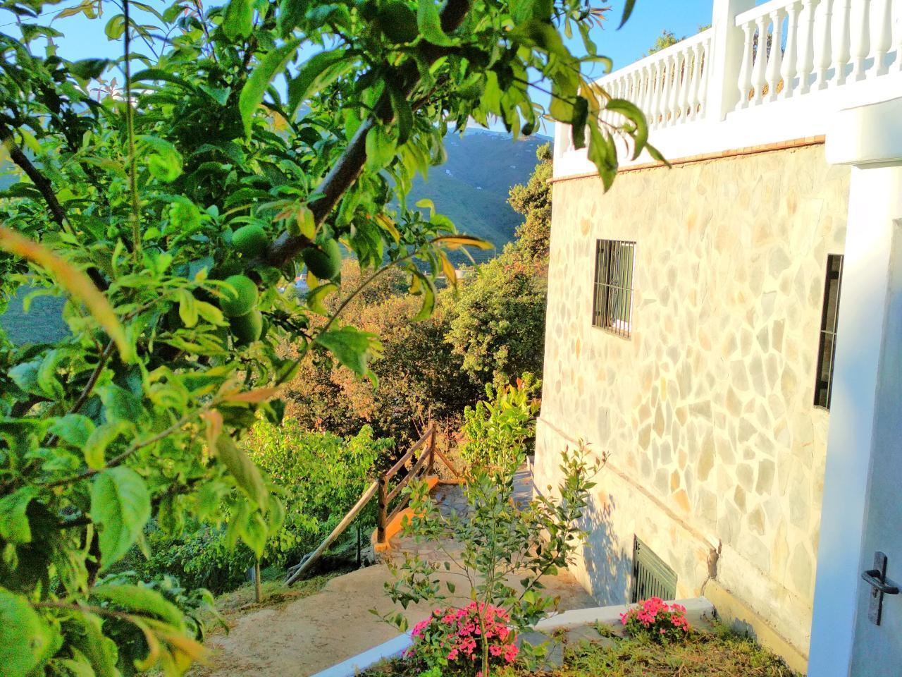 Ferienhaus FERIENHAUS, Costa del Sol , Torrox (2065081), Torrox, Costa del Sol, Andalusien, Spanien, Bild 68