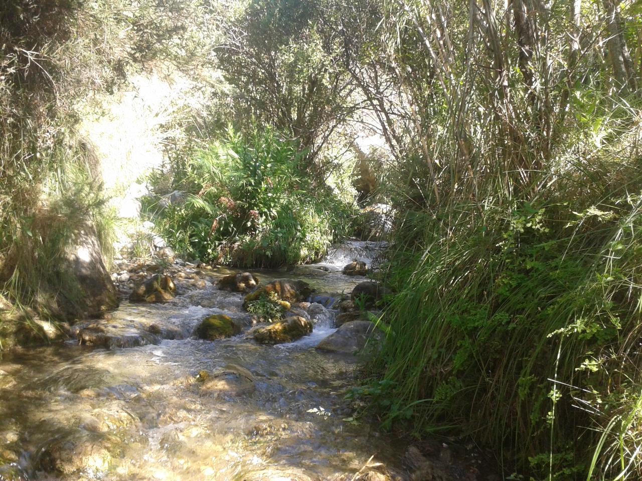 Ferienhaus FERIENHAUS, Costa del Sol , Torrox (2065081), Torrox, Costa del Sol, Andalusien, Spanien, Bild 53