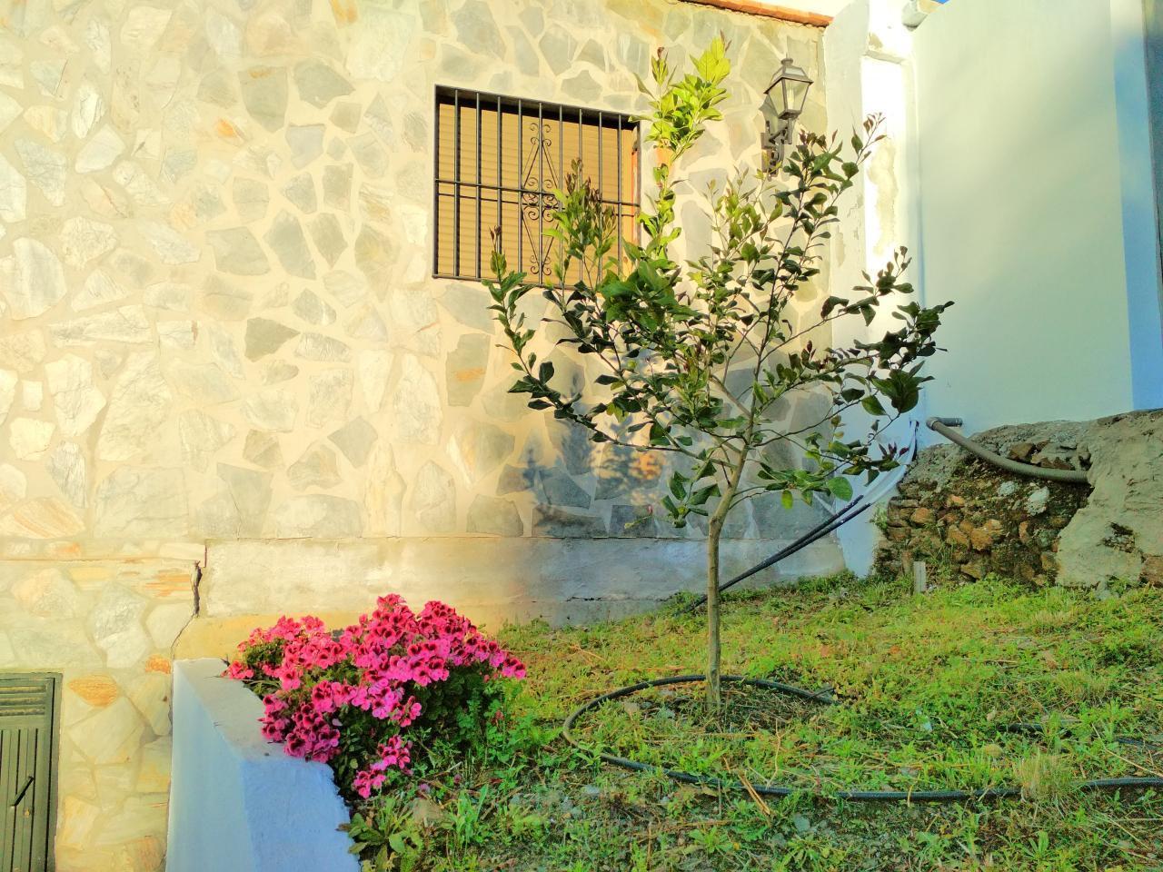 Ferienhaus FERIENHAUS, Costa del Sol , Torrox (2065081), Torrox, Costa del Sol, Andalusien, Spanien, Bild 73