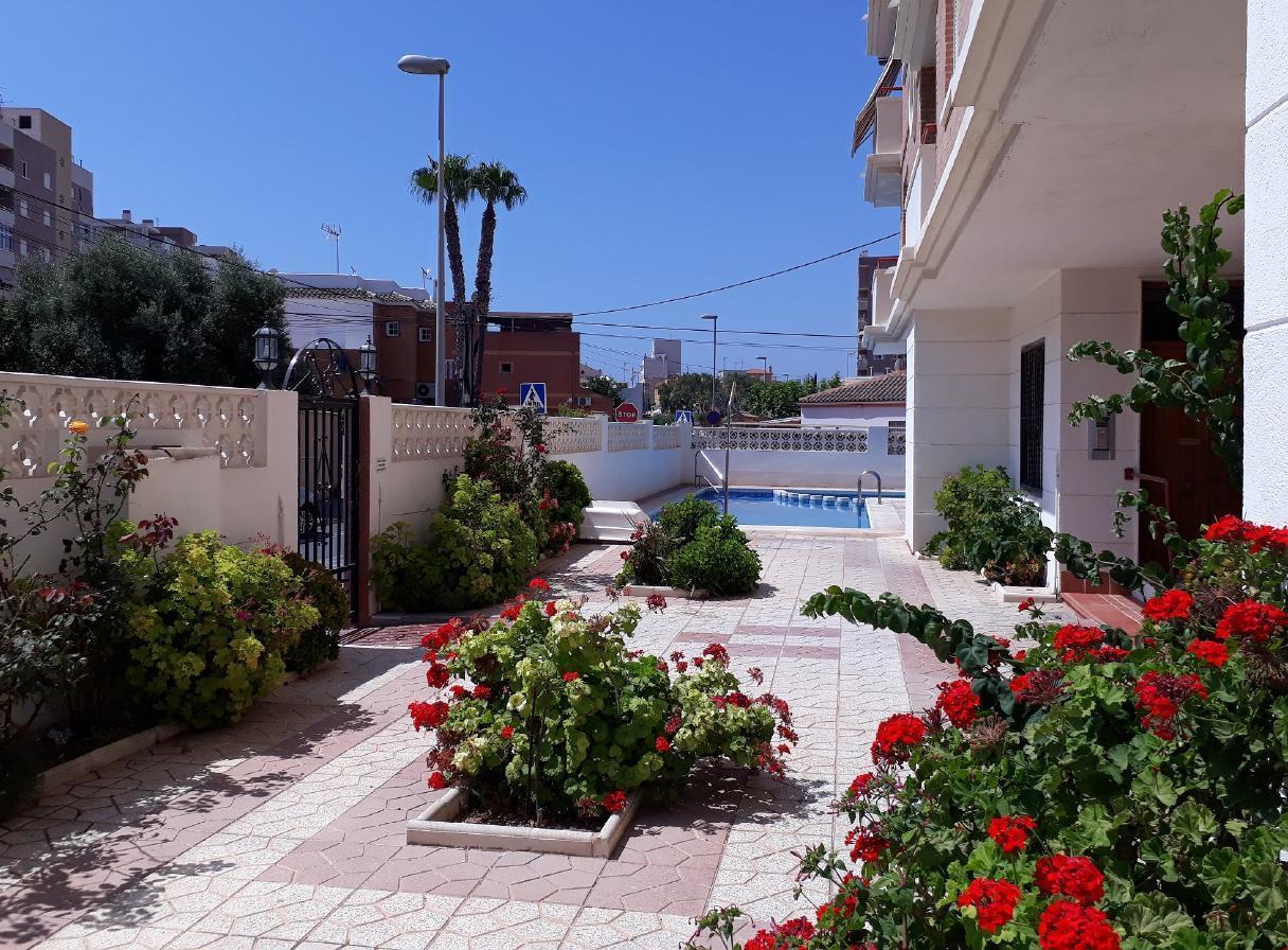 Ferienwohnung mit Parkplatz und Pool (2068497), Torrevieja, Costa Blanca, Valencia, Spanien, Bild 37