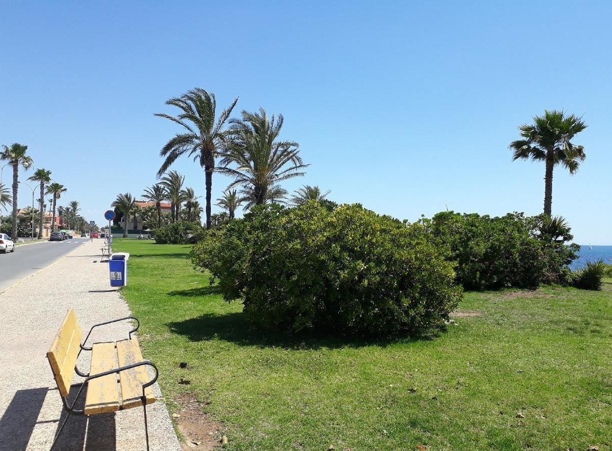 Ferienwohnung mit Parkplatz und Pool (2068497), Torrevieja, Costa Blanca, Valencia, Spanien, Bild 15
