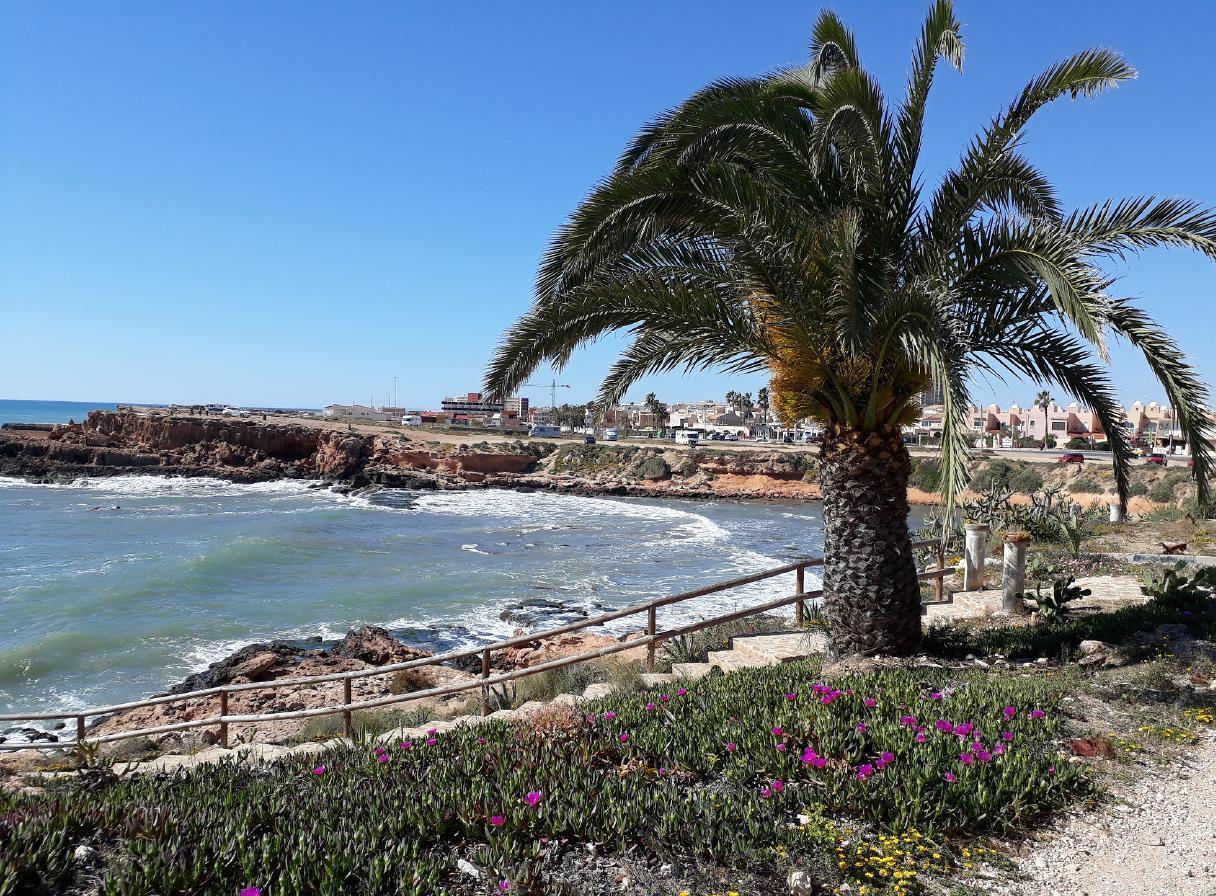 Ferienwohnung mit Parkplatz und Pool (2068497), Torrevieja, Costa Blanca, Valencia, Spanien, Bild 11