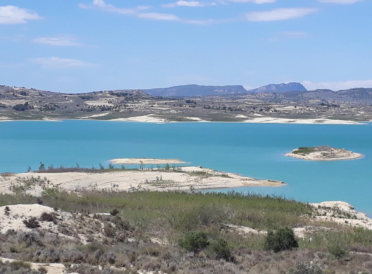 Ferienwohnung mit Parkplatz und Pool (2068497), Torrevieja, Costa Blanca, Valencia, Spanien, Bild 17