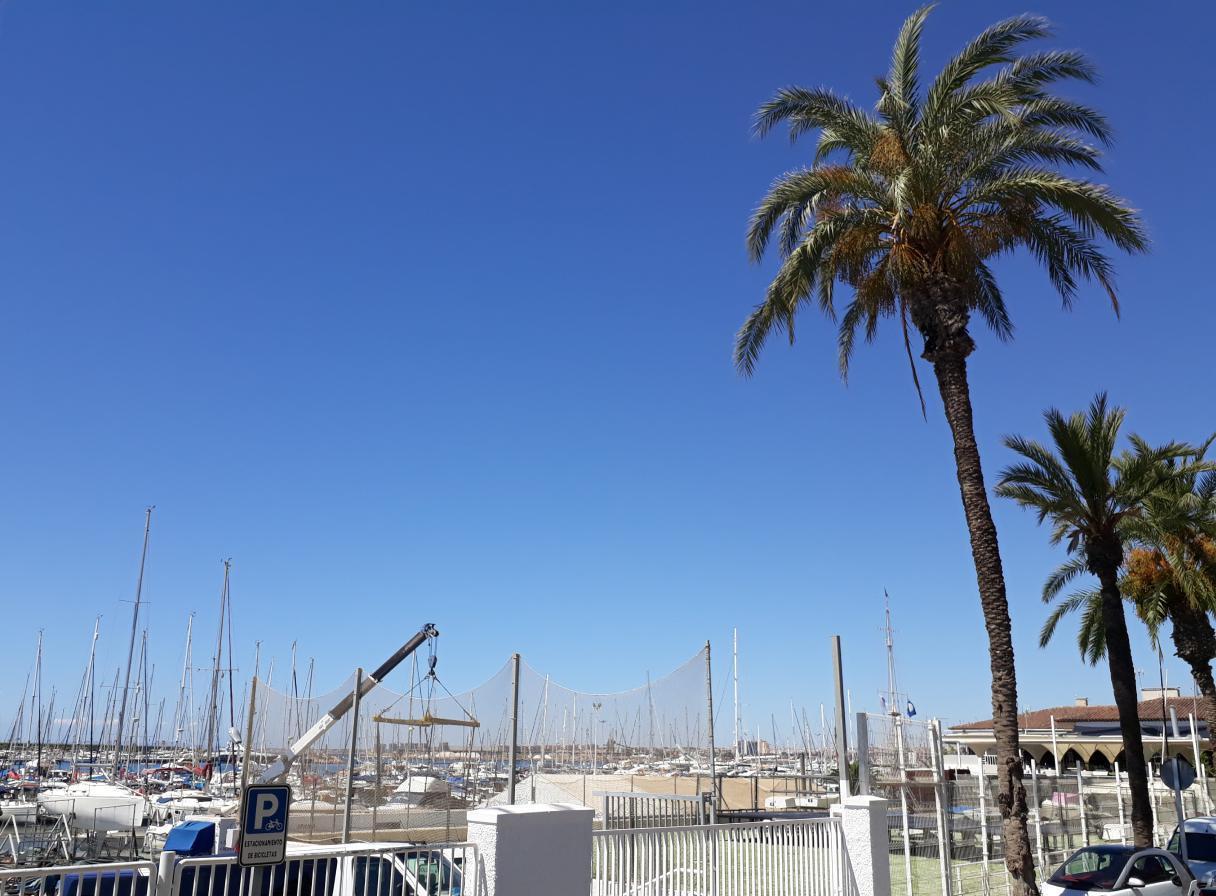 Ferienwohnung mit Parkplatz und Pool (2068497), Torrevieja, Costa Blanca, Valencia, Spanien, Bild 35