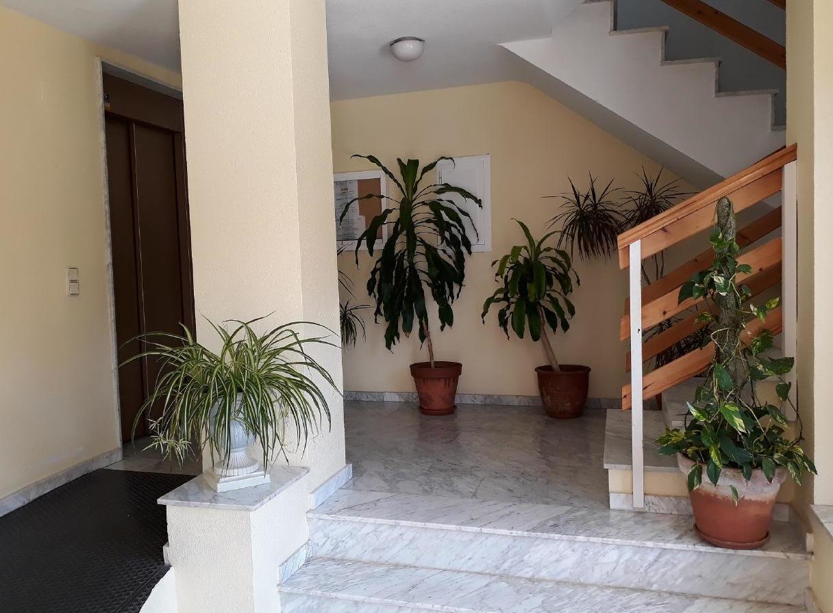 Appartement de vacances mit Parkplatz und Pool (2068497), Torrevieja, Costa Blanca, Valence, Espagne, image 39