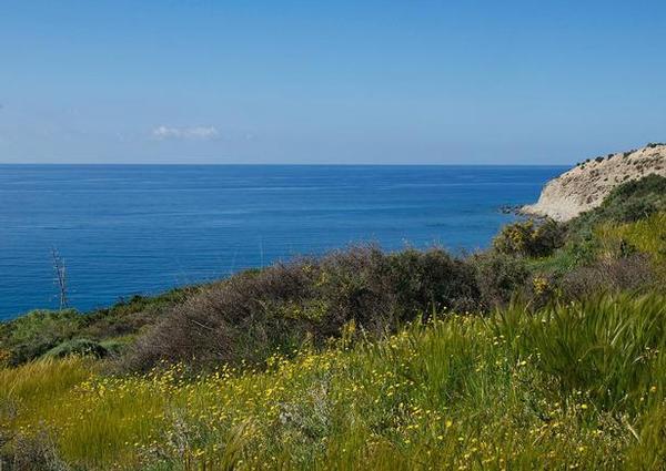 Ferienwohnung Villa Aliki in Mirtos/Ierapetra (Appartement 1) (2070064), Myrtos, Kreta Südküste, Kreta, Griechenland, Bild 8