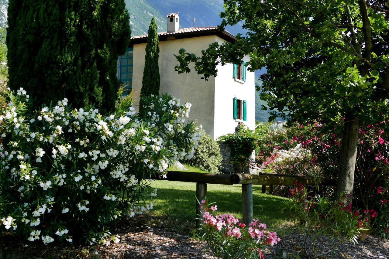 Charmantes Rustiko-Landhaus inmitten alter Olivenb Ferienhaus  Gardasee - Lago di Garda