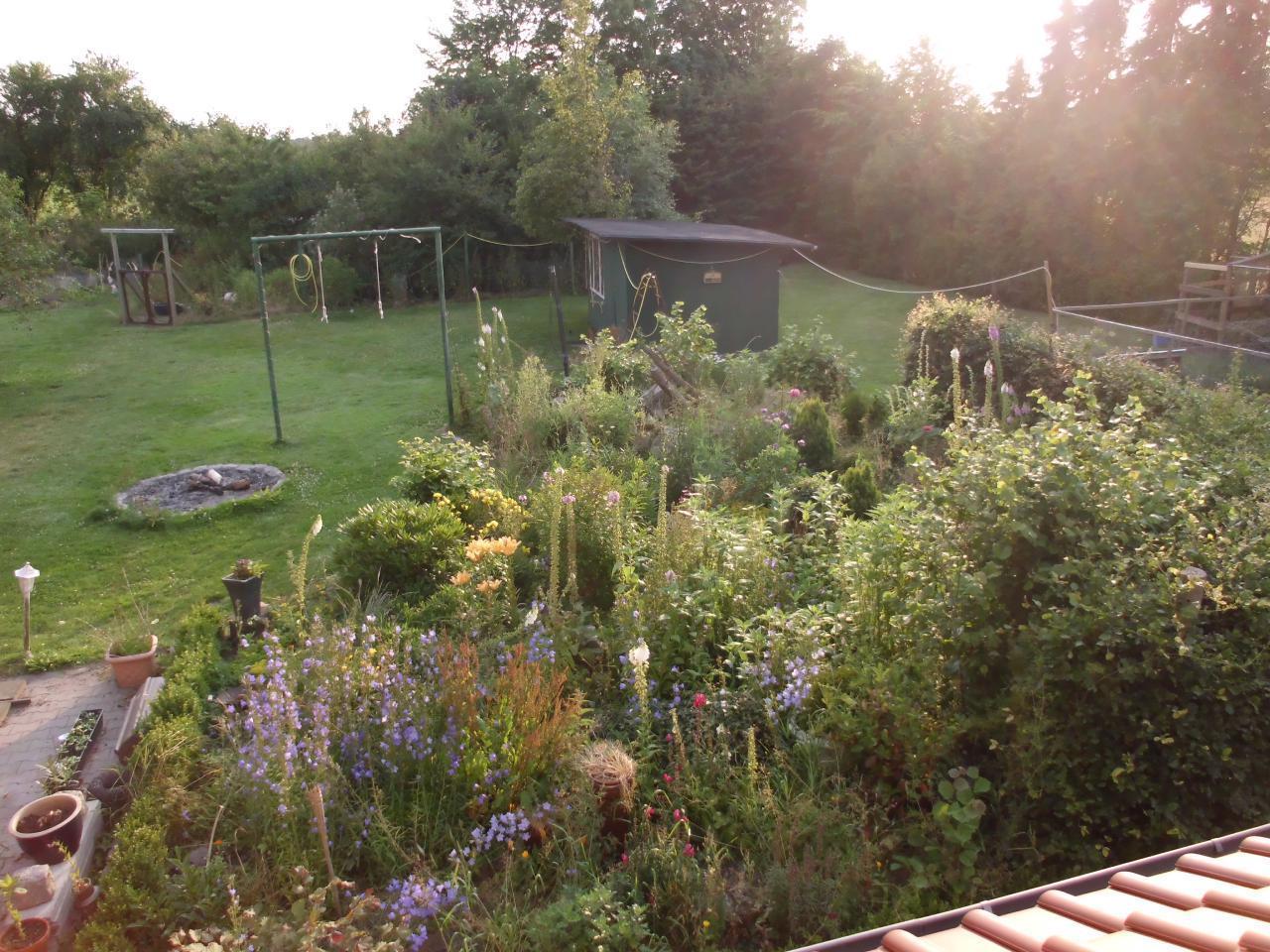 Der Blick aus dem Wohnzimmerfenster im Sommer. Auf dem Rasen darf auch gespielt und gechillt werden.