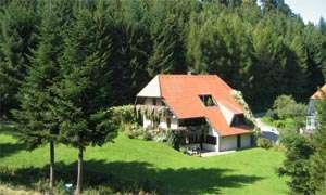Holiday apartment Bergluft (215454), Horben, Black Forest, Baden-Württemberg, Germany, picture 1