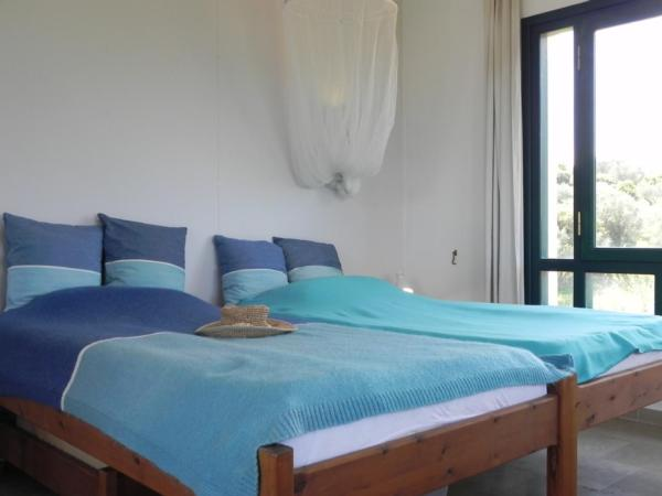 Holiday house Olive Garden - Oase der Ruhe (2167110), Vafeios, Lesbos, Aegean Islands, Greece, picture 11